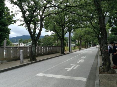 西海子通り.jpg